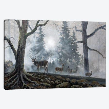 Deer Path I Canvas Print #LNS1} by B. Lynnsy Canvas Art Print