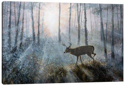 Deer Path IV Canvas Art Print