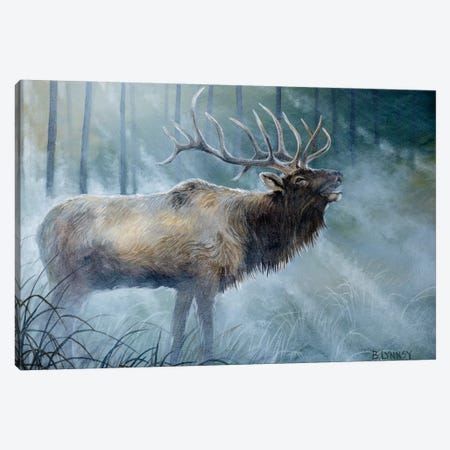 Elk Journey III Canvas Print #LNS3} by B. Lynnsy Art Print