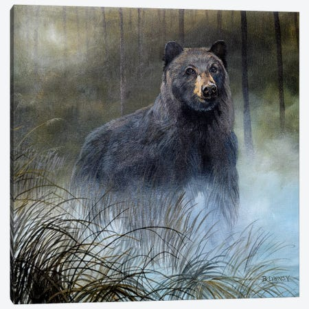 Misty Wild III 3-Piece Canvas #LNS4} by B. Lynnsy Canvas Wall Art