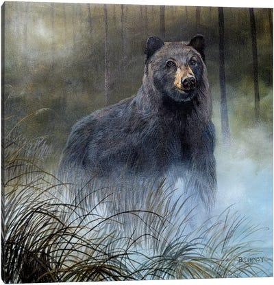 Misty Wild III Canvas Art Print