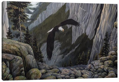 Soaring High I Canvas Art Print