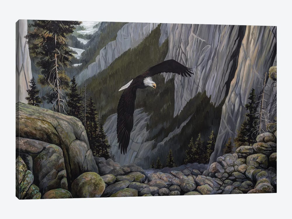 Soaring High I by B. Lynnsy 1-piece Canvas Art Print