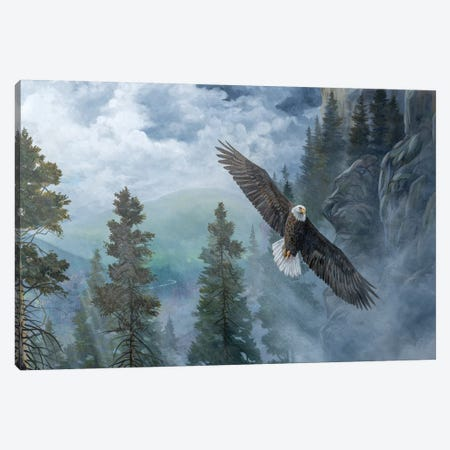 Soaring High II Canvas Print #LNS6} by B. Lynnsy Canvas Art