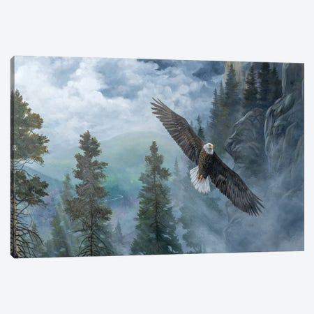 Soaring High II Canvas Print #LNS6} by B. Lynnsy Canvas Art