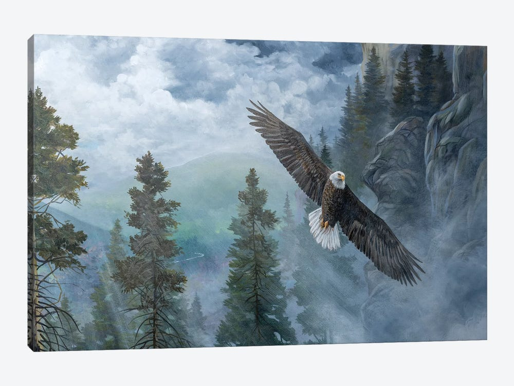 Soaring High II by B. Lynnsy 1-piece Canvas Artwork