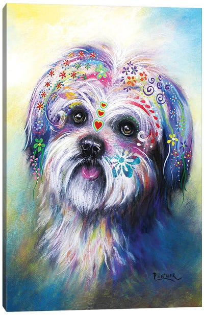 Boho Shih Tzu Canvas Art Print
