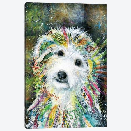 Bichon Canvas Print #LNT1} by Patricia Lintner Canvas Wall Art
