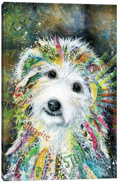 Bichon Canvas Art Print
