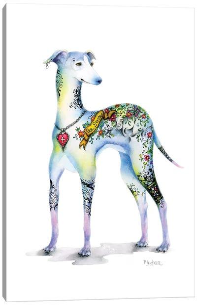 Tattoo Italian Greyhound Canvas Art Print