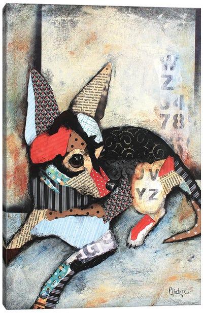 Chihuahua Canvas Art Print