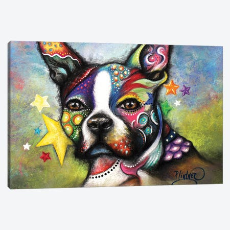 Boho Boston Terrier Canvas Print #LNT2} by Patricia Lintner Canvas Wall Art