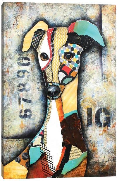 Urban Iggy Canvas Art Print