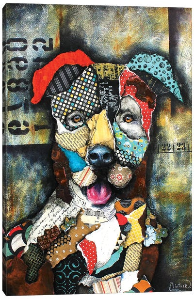 Urban Pit Bull Canvas Art Print