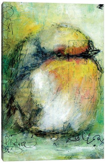 Sparrow Canvas Art Print