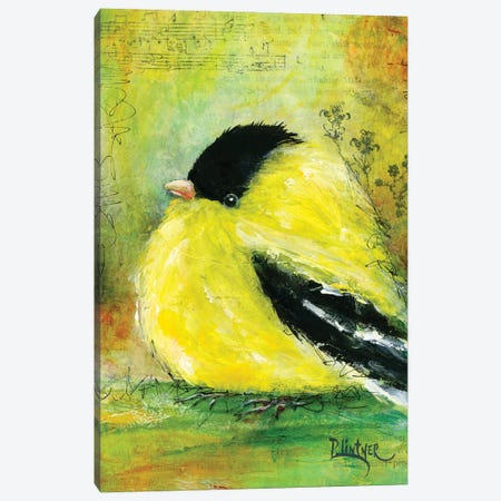 Yellow Finch Canvas Print #LNT48} by Patricia Lintner Art Print
