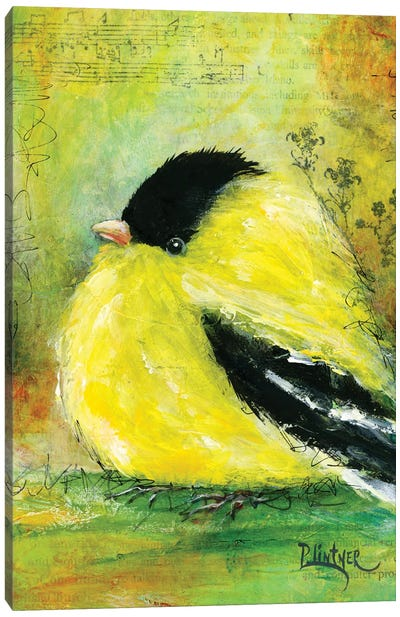 Gold Finch Canvas Art Print