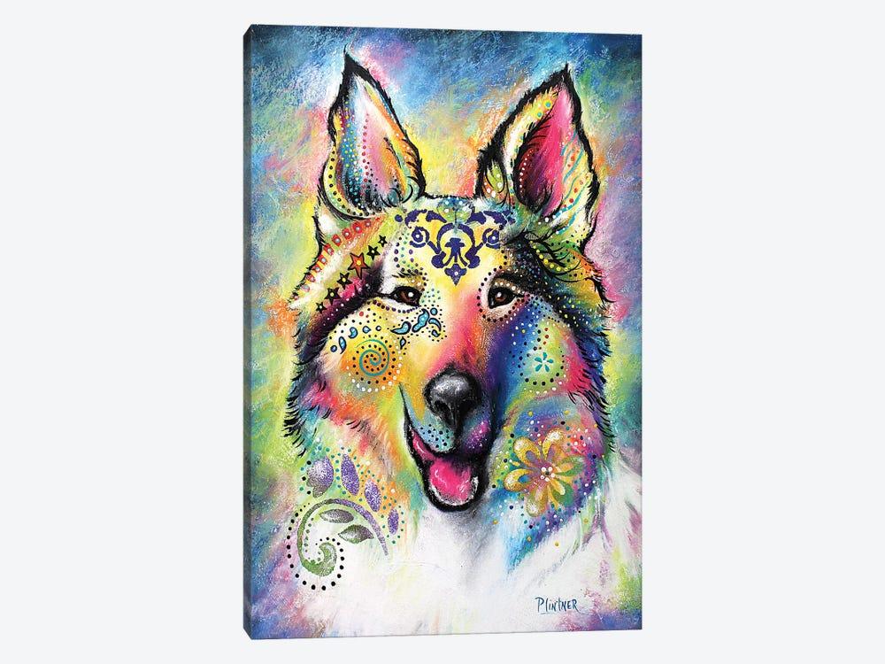 Boho Collie by Patricia Lintner 1-piece Canvas Print