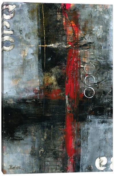 The Red Door Canvas Art Print