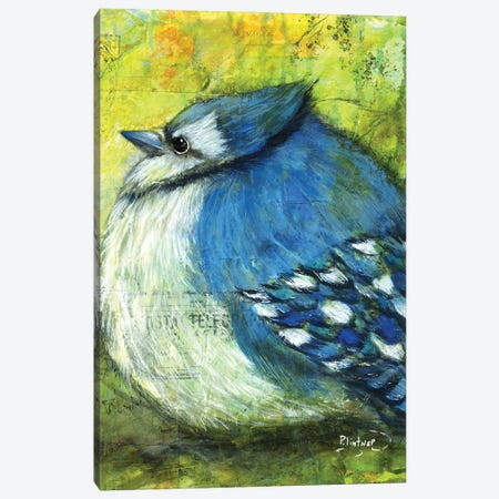 Blue Jay Canvas Print #LNT61} by Patricia Lintner Canvas Print