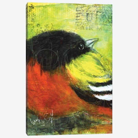 Oriole Canvas Print #LNT71} by Patricia Lintner Canvas Art