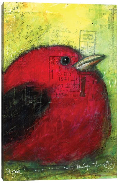 Red Tanager Canvas Art Print