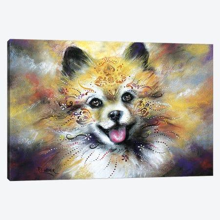 Boho Pomeranian Canvas Print #LNT8} by Patricia Lintner Canvas Wall Art