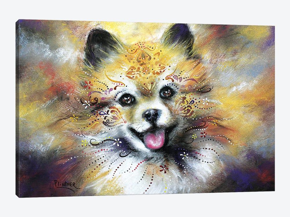Boho Pomeranian by Patricia Lintner 1-piece Art Print