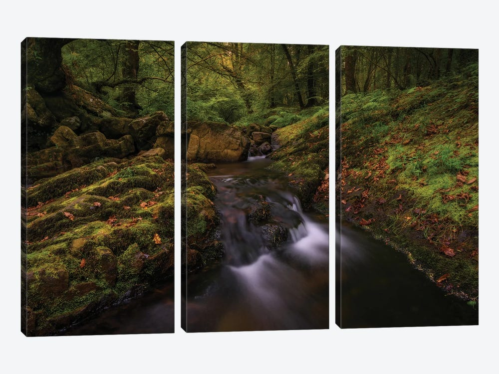 Deep Into The Forest by Sergio Lanza 3-piece Canvas Wall Art