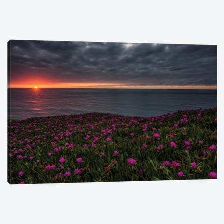 Fading Lights Canvas Print #LNZ120} by Sergio Lanza Canvas Print