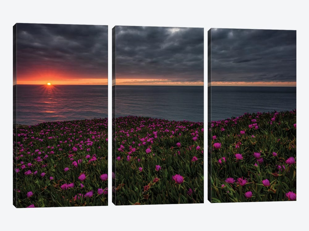 Fading Lights by Sergio Lanza 3-piece Canvas Art Print