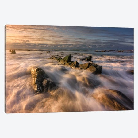 Golden Barrika Canvas Print #LNZ127} by Sergio Lanza Canvas Art