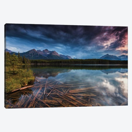Herbert Logs Canvas Print #LNZ133} by Sergio Lanza Canvas Art
