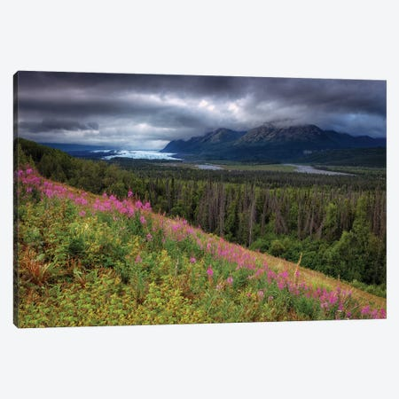 Matanuska-Susitna Valley, Alaska Canvas Print #LNZ162} by Sergio Lanza Art Print