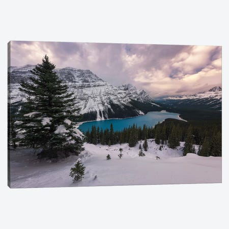 Peyto View Canvas Print #LNZ185} by Sergio Lanza Canvas Artwork