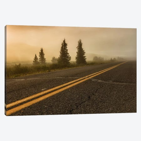 Into The Wild Canvas Print #LNZ19} by Sergio Lanza Canvas Artwork