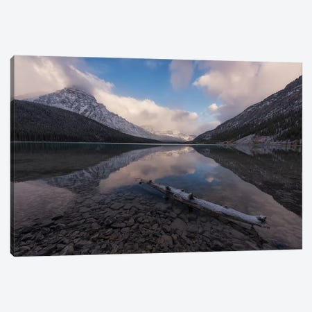 Waterfowl Canvas Print #LNZ241} by Sergio Lanza Canvas Wall Art