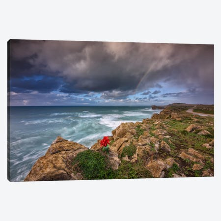 Alone In The Rocks Canvas Print #LNZ2} by Sergio Lanza Canvas Art