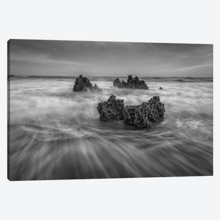Rocky Beach Canvas Print #LNZ43} by Sergio Lanza Canvas Print