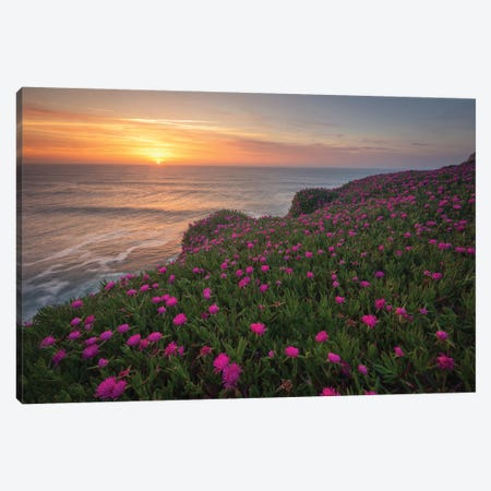 Blooming Times Canvas Print #LNZ85} by Sergio Lanza Canvas Art