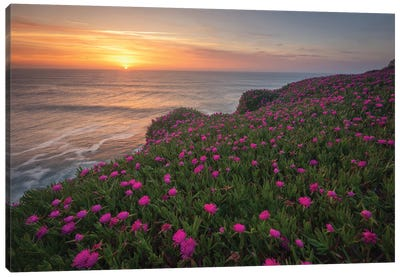 Blooming Times Canvas Art Print