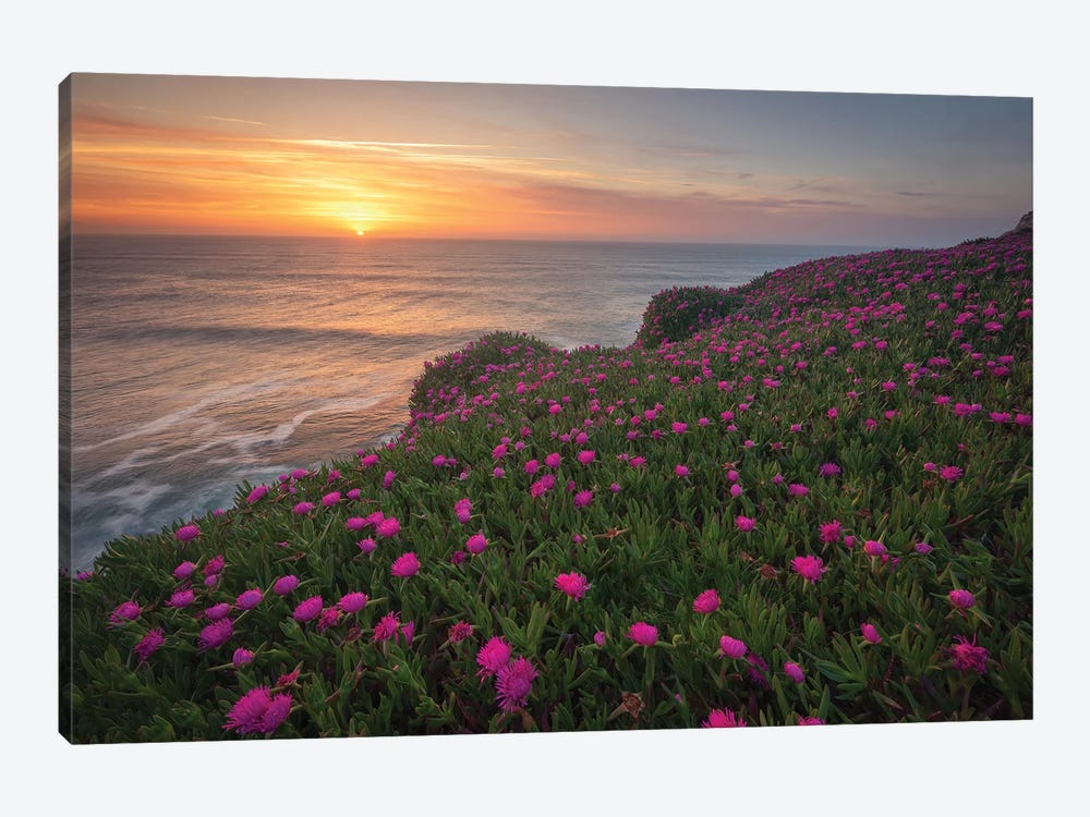 Blooming Times by Sergio Lanza 1-piece Canvas Art Print