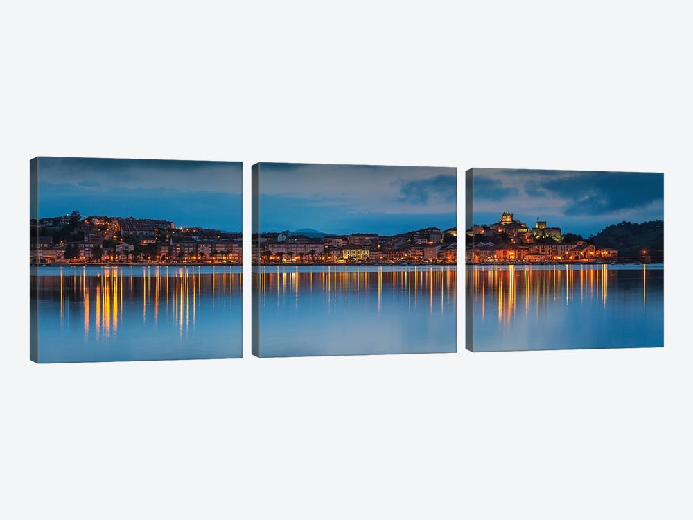 Blue Vincent by Sergio Lanza 3-piece Canvas Print