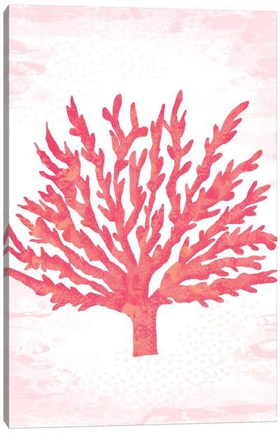 Coral Blush II Canvas Art Print