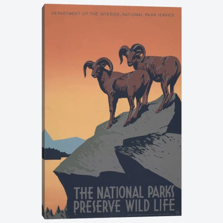 The National Parks Preserve Wild Life Canvas Print #LOC15} by Library of Congress Art Print