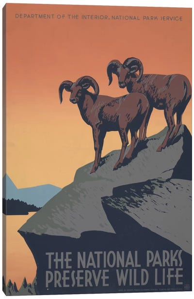 The National Parks Preserve Wild Life Canvas Art Print