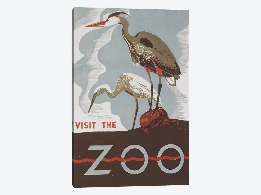 Visit The Zoo (Herons) by Library of Congress 1-piece Canvas Print