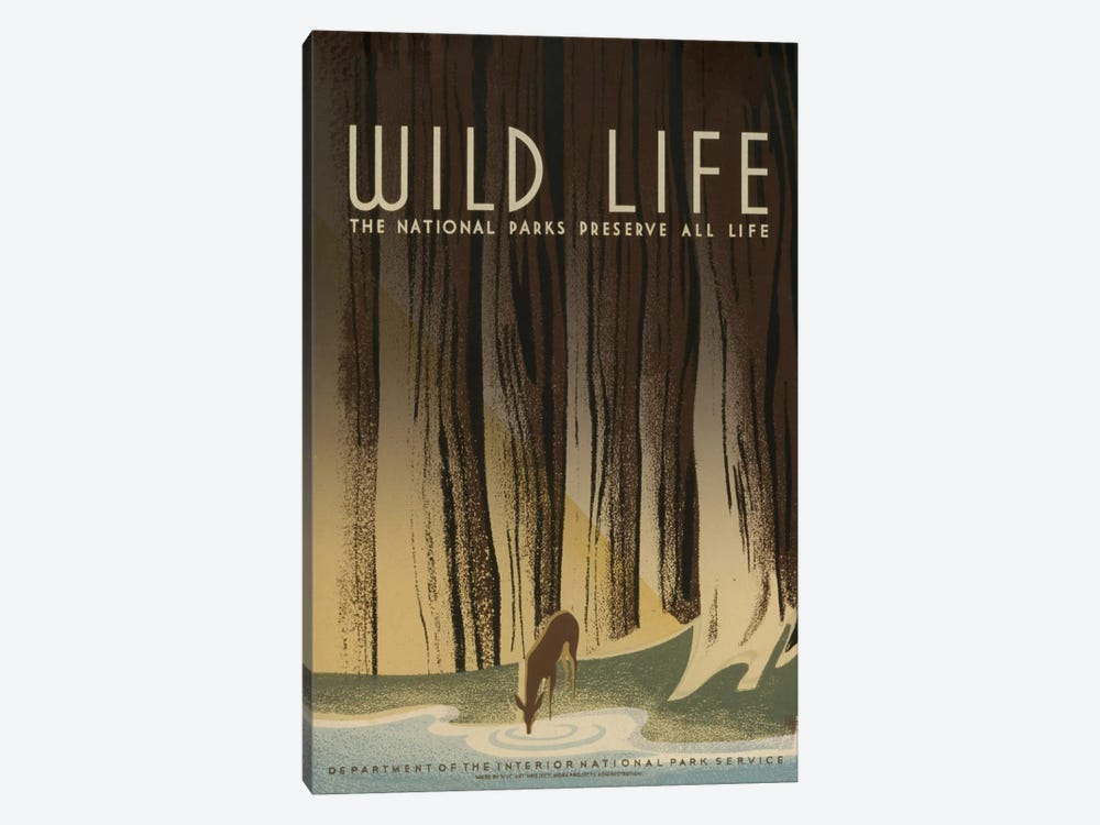 Wild Life by Library of Congress 1-piece Canvas Art