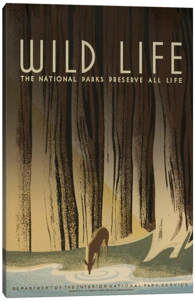 Wild Life Canvas Art Print