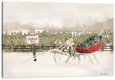 Red Sleigh at Tree Farm Canvas Art Print